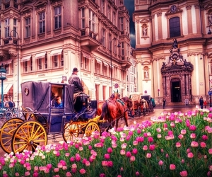 castle, flowers, and horses image