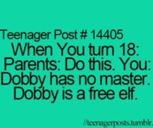 harry potter, dobby, and teenager post image