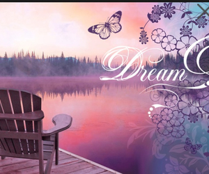 Dream, pink, and butterfly image