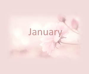 january, pastel, and pink image