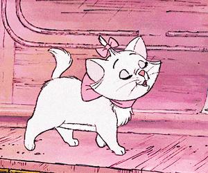 pink cat image