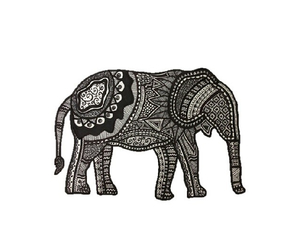 elephant, animal, and black image