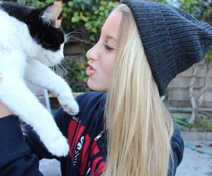 beanie, cat, and quality image