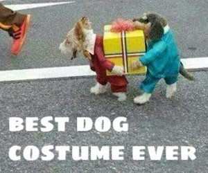 Best, boys, and costume image