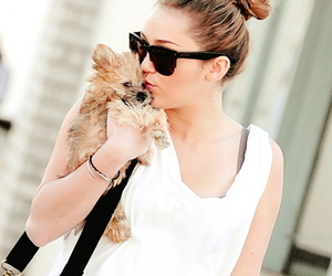 miley cyrus, cute, and dog image