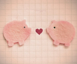 pig, cute, and love image