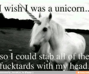 louise, unicorns, and funny pictures image