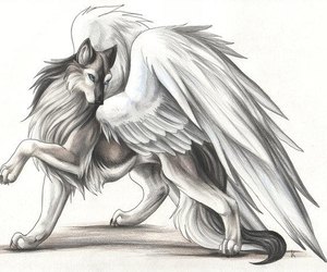 wolf and angel image