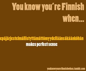finnish image
