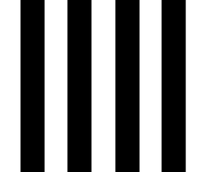 black, black and white, and strips image