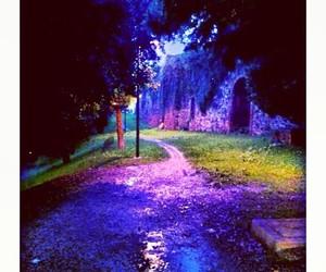 autumn, beautiful, and light image