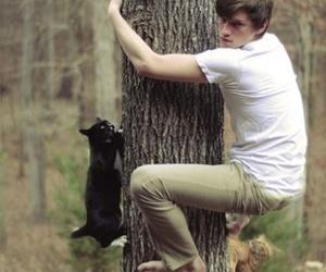 boy, cat, and tree image