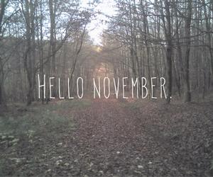hello, hi, and november image