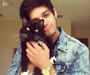 cat, boy, and piercing image