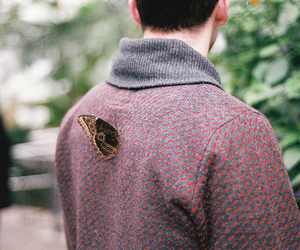 vintage, butterfly, and boy image
