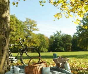 picnic, nature, and bicycle image
