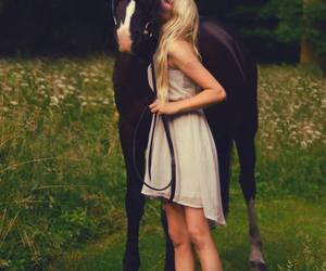 dress, equine, and kisses image
