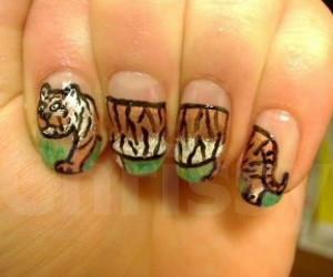 art, nails, and tiger image
