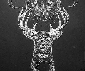 owl, deer, and moon image