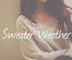 cozy, fall, and sweater image