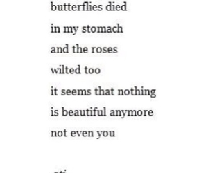 beautiful, butterflies, and Died image