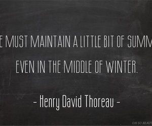 quote, summer, and winter image