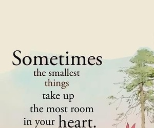 heart, quote, and piglet image