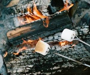 bonfire, cool, and marshmallow image