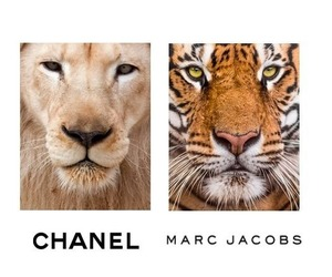 chanel, marc jacobs, and lion image
