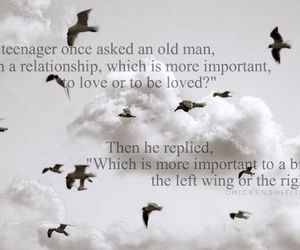 love, bird, and important image