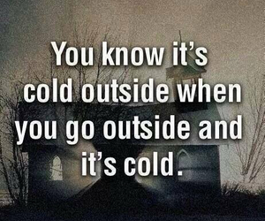 cold, funny, and quote image