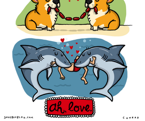 love, dog, and bird image
