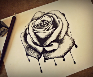 draw, flower, and realistic image