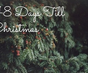 christmas, christmas tree, and days image
