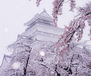 japan, snow, and winter image