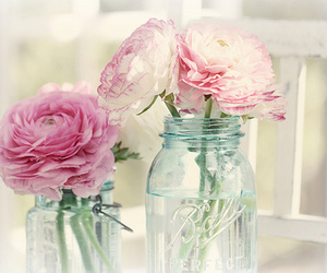 beautiful, flowers, and home image
