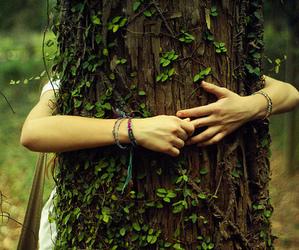 tree, hug, and nature image
