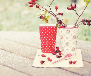 cup, red, and nature image