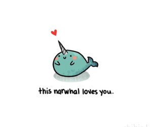 cute, narwhal, and love image