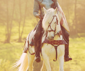tom hiddleston, knight, and horse image