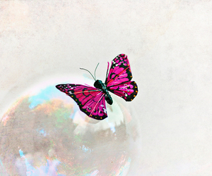 bubbles, butterfly, and cute image