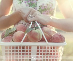 food and peaches image