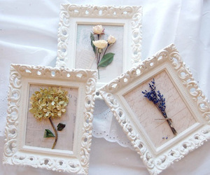 beauty, design, and dried flowers image