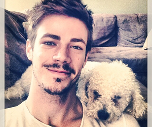 grant gustin, dog, and the flash image