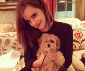 emma watson and dog image