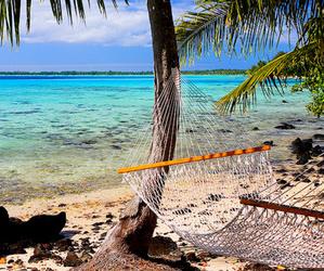 hammock, paradise, and sea image