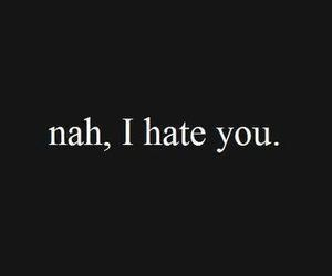 hate, fellings, and i hate you image