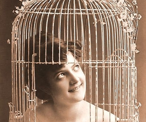 vintage, birdcage, and cage image