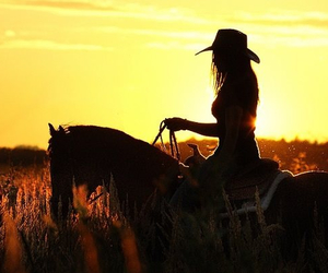 horse, girl, and sunset image