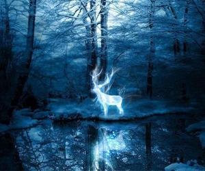 harry potter, patronus, and deer image